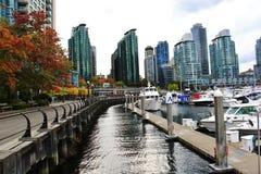 美丽的大厦,地平线,秋天树叶子,秋天颜色,煤炭港口在温哥华市中心,不列颠哥伦比亚省 库存图片