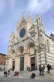 美丽的大教堂铭刻了欧洲楼层被镶嵌的意大利大理石面板siena 免版税图库摄影