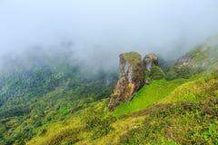 美丽的大石andmountain和雾在土井inthanon在Chiangmai省,泰国 图库摄影