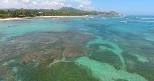 美丽的太平洋海岛 海在大西洋挥动 在绿松石水的空中寄生虫鸟` s眼睛视图录影 顶视图 影视素材