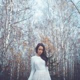 美丽的夫人在桦树森林里 库存图片