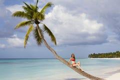 美丽的夫人坐棕榈树在热带海滩 免版税库存图片