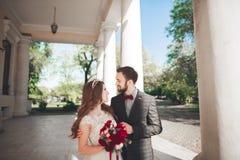 美丽的夫妇、摆在大白色专栏附近的新娘和新郎 库存照片