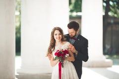 美丽的夫妇、摆在大白色专栏附近的新娘和新郎 库存图片