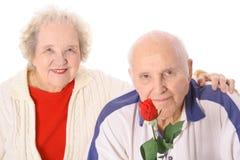 美丽的夫妇玫瑰前辈 库存图片