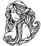 美丽的头发 向量例证