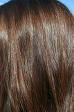 美丽的头发 免版税图库摄影