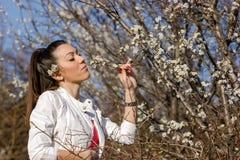 美丽的女孩享用,嗅到樱桃花 免版税库存照片