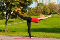 年轻美丽的女孩参与瑜伽,户外在公园 免版税库存照片