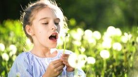 美丽的女孩吹的蒲公英夏日 股票录像
