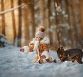 美丽的女孩和小狗画象在冬天森林 免版税库存图片
