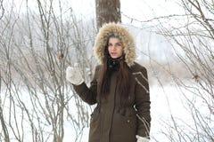 美丽的女孩在一个美丽的冬天公园 库存图片