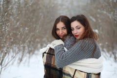 美丽的女孩在一个美丽的冬天公园 免版税库存照片