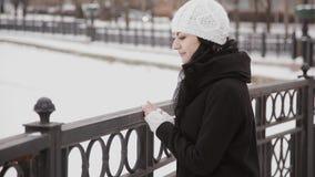 美丽的女孩在一座积雪的桥梁去 股票视频