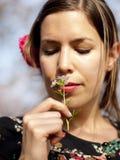 美丽的女孩在春天的嗅到一棵酢酱草 库存照片