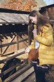 年轻美丽的女孩在有羊羔的鸟舍附近站立在城市zo 免版税库存照片