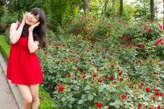 美丽的女孩在玫瑰园里 库存图片
