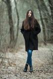 年轻美丽的女孩在黑外套蓝色围巾探索的秋天/春天森林公园 有华美的extr的一个典雅的深色的女孩 库存图片