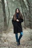 年轻美丽的女孩在黑外套蓝色围巾探索的秋天/春天森林公园 有华美的extr的一个典雅的深色的女孩 库存照片
