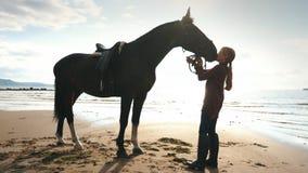 美丽的女孩对她的在海滩的马关心 在女孩的重点 股票视频