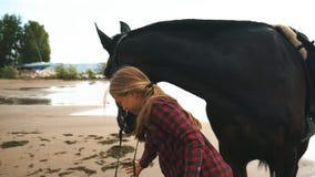 美丽的女孩对她的在海滩的马关心 在女孩的重点 影视素材
