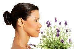 美丽的女孩气味淡紫色花 库存照片