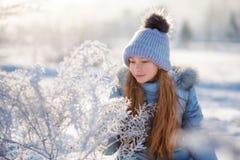 美丽的女孩画象在冬天森林里 免版税图库摄影