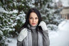 美丽的女孩画象室外在与雪的一个冬天 库存照片