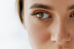 美丽的女孩眼睛和眼眉特写镜头有自然构成的 免版税库存照片