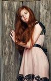 美丽的女孩红发肉欲 库存照片