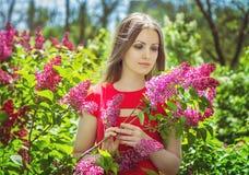 美丽的女孩近的开花的丁香 库存照片
