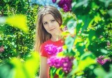 美丽的女孩近的开花的丁香 库存图片