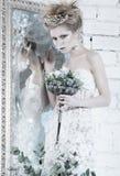 美丽的女孩,在雪的图象的白色礼服 库存照片