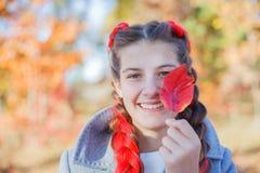 美丽的女孩-五颜六色的秋天画象 免版税库存照片