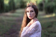 美丽的女孩 幻想少妇在森林 库存图片