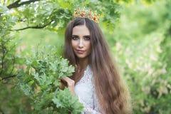 美丽的女孩 幻想少妇在森林 库存照片