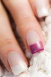 美丽的女性指甲盖 免版税库存图片