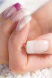 美丽的女性指甲盖 免版税图库摄影