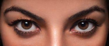 美丽的女性眼睛 库存照片