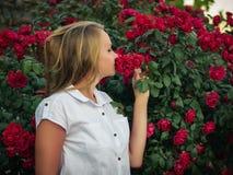 美丽的妇女吸入开花的玫瑰芳香  免版税图库摄影
