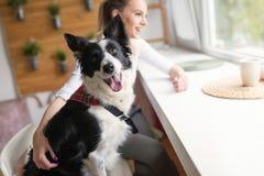 美丽的妇女和她的最好的朋友一条愉快的狗 库存照片