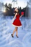 美丽的妇女在圣诞老人礼服 免版税库存照片