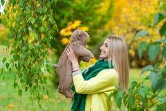 美丽的妇女在拿着玩具熊的秋天公园 库存照片