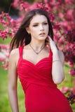 美丽的妇女在有桃红色花的一个公园 库存图片