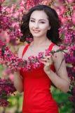 美丽的妇女在有桃红色花的一个公园 库存照片