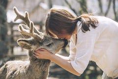 年轻美丽的妇女在阳光下的拥抱动物狍 免版税库存图片