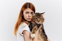 年轻美丽的妇女拿着在白色背景,画象,情感的一只猫 免版税库存照片