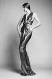 年轻美丽的妇女时尚画象银色礼服的 免版税图库摄影
