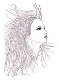 美丽的妇女档案有挥动的头发的 图表样式 免版税库存图片