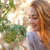 美丽的妇女照料一棵小的树 免版税库存照片